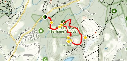 Bruce Clements Trail to Chestnut Hill Map
