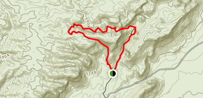 Olive Trail Map