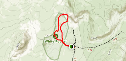 White Pocket Map