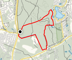 Long Pond and Green Trail Loop Map