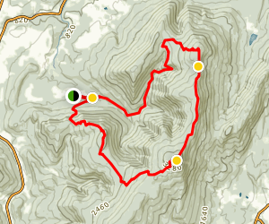 Mount Williams, Mount Fitch, Mount Greylock, and Stony Ledge Map