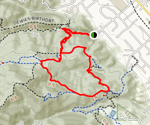 Ringtail Cat, Madrone and Point of No Return Loop Map
