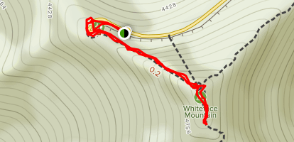Whiteface Mountain Map