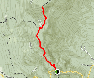 Mount Abraham via Long Trail Map
