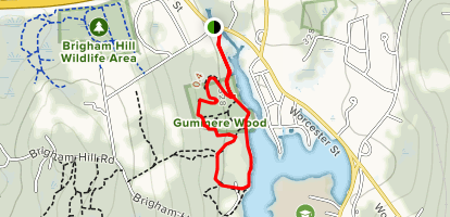 Gummere Woods Loop Map