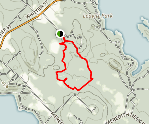 Page Pond and Forest Map