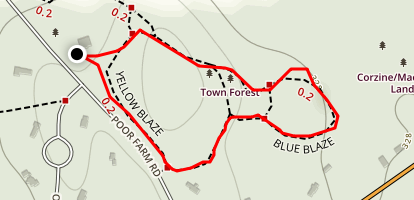 Town Forest Yellow and Blue Loop Map