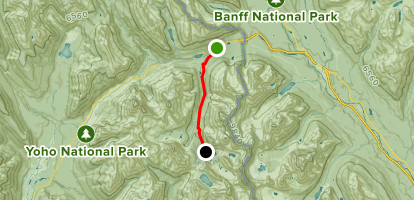 Lake O'Hara Fire Road Map