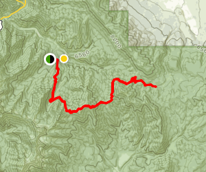 South Fork to Packard Canyon Trail [CLOSED] Map