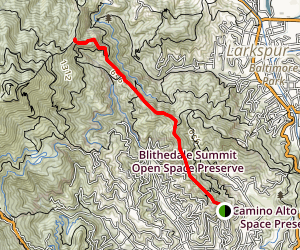 Blithedale Ridge Trail Map