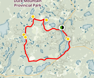 Mossberry Trail  Map