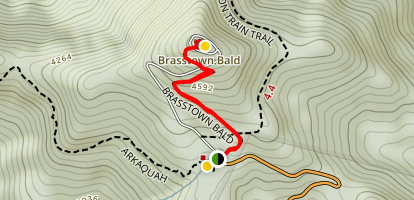 Brasstown Bald Trail Map