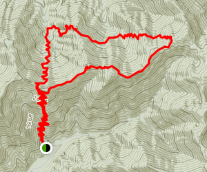 Bird Mountain and North Bird Mountain Loop Map