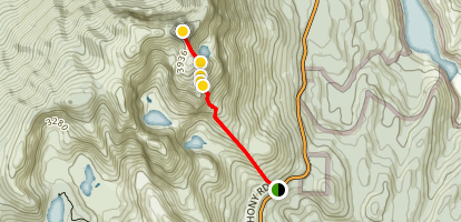 Mount Murchison Track Map