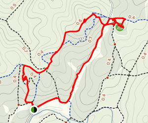 Amatzya Forest Loop Map