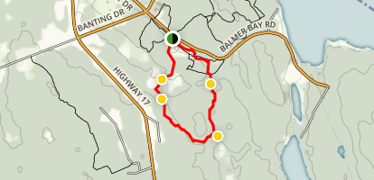 Cranberry Lake to Beech Hill Loop Map
