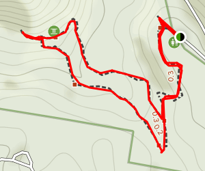 Knoll Walking Track and Cameron Falls Map