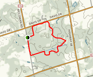 North Tract York Region Forest Map
