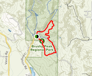Brushy Peak South Loop with Tamcan Trail and Laughlin Loop Trail Map