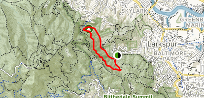Dawn Falls Trail Loop Map
