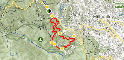 Canopy, Dipsea and Sun Trail Loop  Map