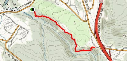 Corner Brook Trail Map