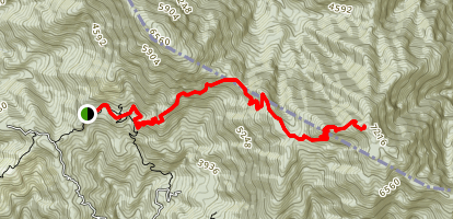 Blue Mountain Peak Map