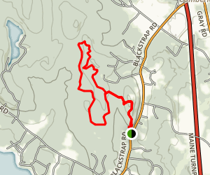 North Falmouth Community Forest [CLOSED] Map