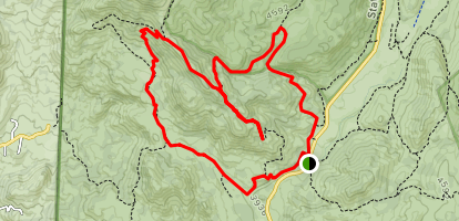 Japacha Fire Road to Arroyo Seco Trail Loop Map
