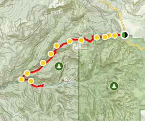 Rattlesnake Creek Trail Map