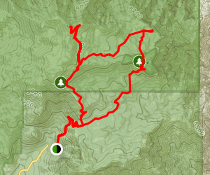 Devil's Slide Trail, Willow Creek Trail, and San Jacinto Peak Loop Map