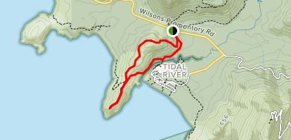 Tidal Overlook Track and Lilly Pilly Gully Track Loop Map
