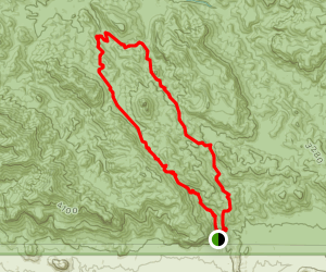 Weaver's Needle Loop Trail Map