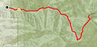 Cherry Peak Trail Map