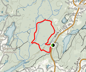 Nellies Trail to Tarr Trail Loop Map