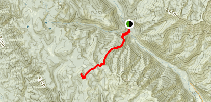 Cougar Mountain via S Tommy and Tyee Ridge Trail Map