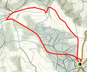 Houghton Forest Map