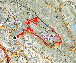Golden Spike, Bridle Trail, Chown Trail, Montinero Trail Loop Map
