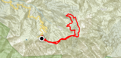 Mount Buller to Stonefly Loop Map