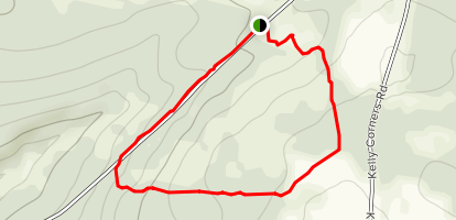 Milford Forest Pond Loop Map
