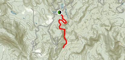 Chattooga Cliffside Trail Map