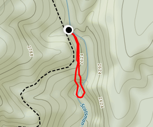 Waterfalls on Scotsman Creek Map