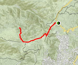 Mount Marie Louise Trail Map