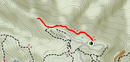 Boy Scout and May's Point Trail Map