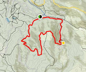 Keppel Lookout and Steavenson Falls via Tree Fern Gully Track  Loop Map