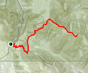 Domerie Divide Trail to Mount Baldy Map
