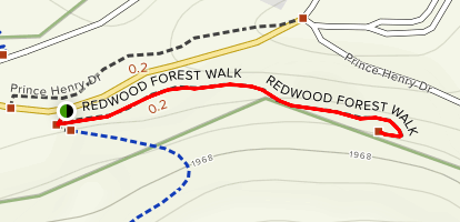 Redwood Forest Walk Map