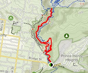 Easy Rider to Defibrillator to Hyperlink Trail Loop Map