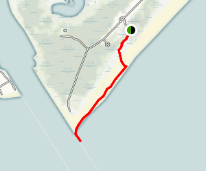 Two Mile Beach Dune Trail to Cape May Canal Jetty Map