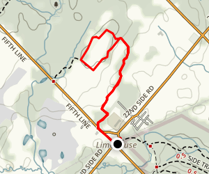 Maple Ridge Loop Map